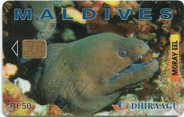 Maldives - Dhiraagu (chip) - Morey Eel - 90MLDGIB - Chip Siemens S30, 50MRf, Used - Maldiven
