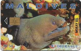 Maldives - Dhiraagu (chip) - Morey Eel - 256MLDGIA - Chip Siemens S30, 50MRf, Used - Maldiven