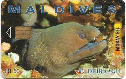 Maldives - Dhiraagu (chip) - Morey Eel - 323MLDGIU - Chip Siemens S37, 50MRf, Used - Maldivas