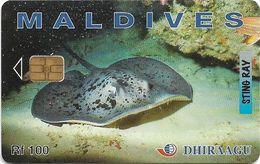 Maldives - Dhiraagu (chip) - Sting Ray - 202MLDGIC - Chip Siemens S30, 100MRf, Used - Maldivas
