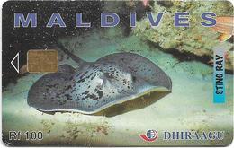 Maldives - Dhiraagu (chip) - Sting Ray - 256MLDGIC - Chip Siemens S35, 100MRf, Used - Maldivas