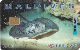 Maldives - Dhiraagu (chip) - Sting Ray - 274MLDGIB - Chip Siemens S35, 100MRf, Used - Maldivas