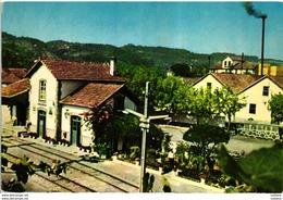 VOUZELA - ESTAÇÃO DE CAMINHOS DE FERRO - RAILWAY TRAIN STATION - 1960S  PORTUGAL - Viseu