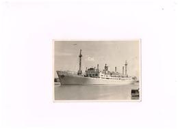 """M.S. """"Albertville"""" Compagnie Maritime Belge.Expédié De Santa Cruz De Teneriffe à Antwerpen. - Dampfer"""