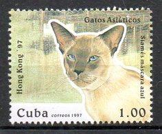 CUBA. Timbre Issu Du BF 149 De 1997. Chat. - Chats Domestiques