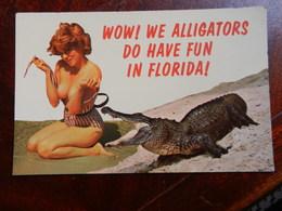 20039) FLORIDA WOW WE ALLIGATORS DO HAVE FUN IN FLORIDA PIN UP NON VIAGGIATA PICCOLE ABRASIONI AL RETRO - United States