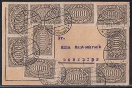 DR Karte Mef Minr.10x 254 Lindau 11.9.23 Gel. Nach Dornbirn - Covers & Documents