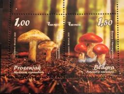 BOSNIA AND HERZEGOVINA  2020,POST SARAJEVO,FLORA,MUSHROOMS,BLOCK,AMANITA,MNH - Mushrooms