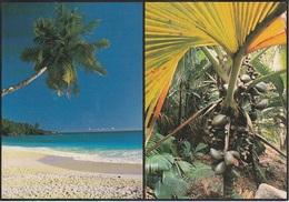 Post Card - Seychelles - Viag. 1988 Per Bergamo - Seychelles