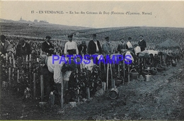 129221 FRANCE VENDANGES COSTUMES DOWN THE DIZY COATS POSTAL POSTCARD - France