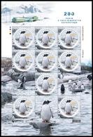 UKRAINE 2020. 200th ANNIVERSARY OF DISCOVERY OF ANTARCTICA. GENTOO PENGUINS. Mini-sheet Of 9 Stamps Mi-Nr. 1857 MNH (**) - Antarctic Wildlife