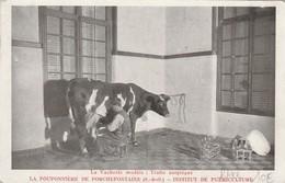 VERSAILLES PORCHEFONTAINE LA POUPONNIERE INSTITUT DE PUERICULTURE LA VACHERIE MODELE TRAITE ASEPTIQUE RARE - Francia