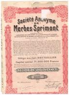 Action Ancienne - Société Anonyme De Merbes - Sprimont - Titre De 1929 - - Industrie