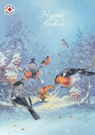 Postal Stationery - Birds - Bullfinches - Brownie - Gnome - Elf Skiing - Red Cross 2017 - Suomi Finland - Raimo Partanen - Finland
