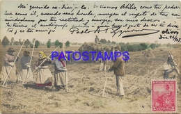 129260 REAL PHOTO COSTUMES OF FIELD WORKING CIRCULATED TO ARGENTINA POSTAL POSTCARD - Fotografie
