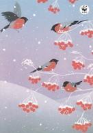 Birds - Bullfinches In Winter Landscape - WWF Panda Logo - Jaana Aalto - Double Card - NEW - Christmas