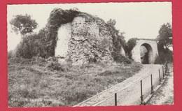 Sautour - La Porte Romaine - Edition Smetz ( Voir Verso ) - Philippeville