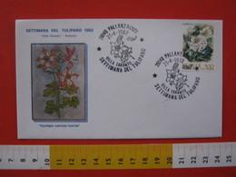 A.12 ITALIA ANNULLO 1982 PALLANZA NOVARA VERBANIA SETTIMANA TULIPANO VILLA TARANTO FIORE FLOWERS AQUILEGIA BUSTA UFF - Flora