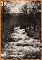 63 / Ruisseau De La Faye Près Du Moulin Du Bègue - Env. D'Augerolles Et Du Brugeron (années 50) - Francia
