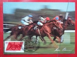 KOV 505-8 - HORSE, CHEVAL, PFERDE RENNEN, HORSE SPORT IFFEZHEIM, INTERNATIONALE GALOPPRENNEN - Chevaux