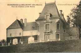 52 - BUSSIERES LES BELMONT - Vue Du Château Côté Nord - Altri Comuni