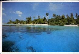 Maldives  Resort Island - Formato Grande Non Viaggiata – E 14 - Maldive
