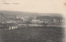 OSSOGNE  (Havelange)   ;  Panorama  ( 1-11-1918 Vers Allemagne :  Feldpost ) - Havelange