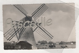 ZUID-HOLLAND - CP HOLLANDSE MOLEN / MOULIN A VENT BIJ OEGSTGEEST - N°38 - CIRCULEE EN 1956 TAXEE 3 TIMBRES TAXE - Pays-Bas