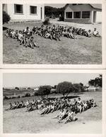 """2 Photos Originales Plage & Maillots De Bains Pour Vacances 1958 - Colonie """"Le Grand Fol"""" - Le Pouliguen (44510) Id. Dos - Personnes Identifiées"""