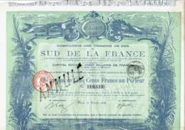 13-CHEMINS DE FER DU SUD DE LA FRANCE. 1890 - Shareholdings
