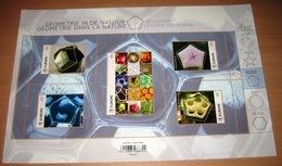 Belg. 2020 - Géométrie Dans La Nature - La Forme Pentagone ** Geometrie In De Natuur -De Vijfhoek** - Belgium