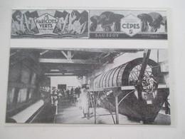 Année(1927) AURAY (Morbihan) CONSERVERIE à Haricots Verts & Cêpes Ets SAUSSOY   - Ancienne Coupure De Presse - Historische Documenten