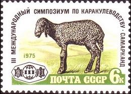 USSR Russia 1975 3rd International Astrakhan Lamb Breeding Fauna Animals Mammals Farm Sheep Stamp MNH Michel 4405 - Farm