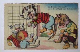 """""""Personifiziert, Katzen, Fußball"""" Jahr 1950 ♥ (51508) - Fussball"""