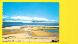 ARCACHON Les Passes Du Bassin (Dany Renaud Buzaud) Gironde (33) - Arcachon