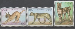 ALGERIE CHATS, Chat, Cats, Gato, Yvert: 859/61 SERIE DENTELEE  ** MNH. PERFORATE - Hauskatzen