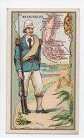- CHROMO Chicorée Extra E. HUMBLOT, à HORDAIN (Nord) - Carte Géographique MADAGASCAR - - Tea & Coffee Manufacturers