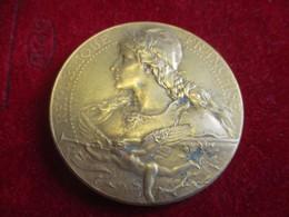 Médaille /Exposition De L'Enfance  /Le Bottee/Petit Palais / PARIS. 1901   MED306 - Profesionales / De Sociedad