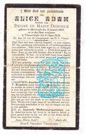 DP Alice Adam / DeHouck ° Boesinge 1895 † Vlamertinge 1920 / Ieper - Imágenes Religiosas