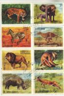 AJMAN - 1972 ANIMAL SHEETLET VFU - Ajman
