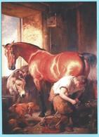 0508 - HOEFSMID - FARRIER - MARECHAL FERRANT - HORSE - Sin Clasificación