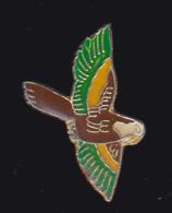 61832- Pin's -Perroquet.oiseaux . - Animals