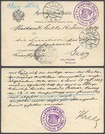 Austria - Dienstpostkarte. Politischen Bezirks, STADTAMT CHILLI / Celje, Slovenia - ALS POLITISCHE BEHORDE 1904 - Graz. - Briefe U. Dokumente