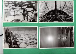 Norge Norvege Norway 1938 Photography 4 Photos Boat Paquebot SS De Grasse Arrivée à La Banquise (format 8,7cm X 13,8cm) - Schiffe