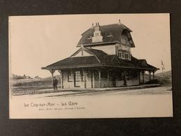 Coq S/mer La Gare - De Haan