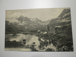 Suisse. Albrunpass Et L'Ofenhorn (Binn) (8370) - VS Valais