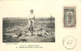A.E.F. - Chari-Tchad - Chasse Aux Hyènes En Pays Sara - Chad