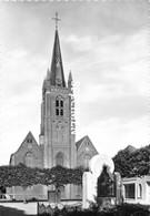Kerk St-Amand - Wingene - Wingene