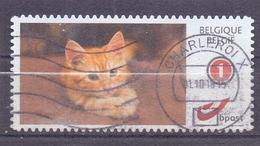 België - Duostamps  - Katten - Zonder Papierresten - Bélgica