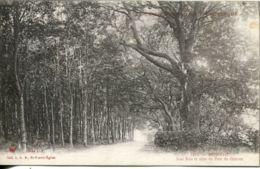 N°3285  T -cpa Pépinvast -sous Bois Et Allée Du Parc Du Château- - Autres Communes